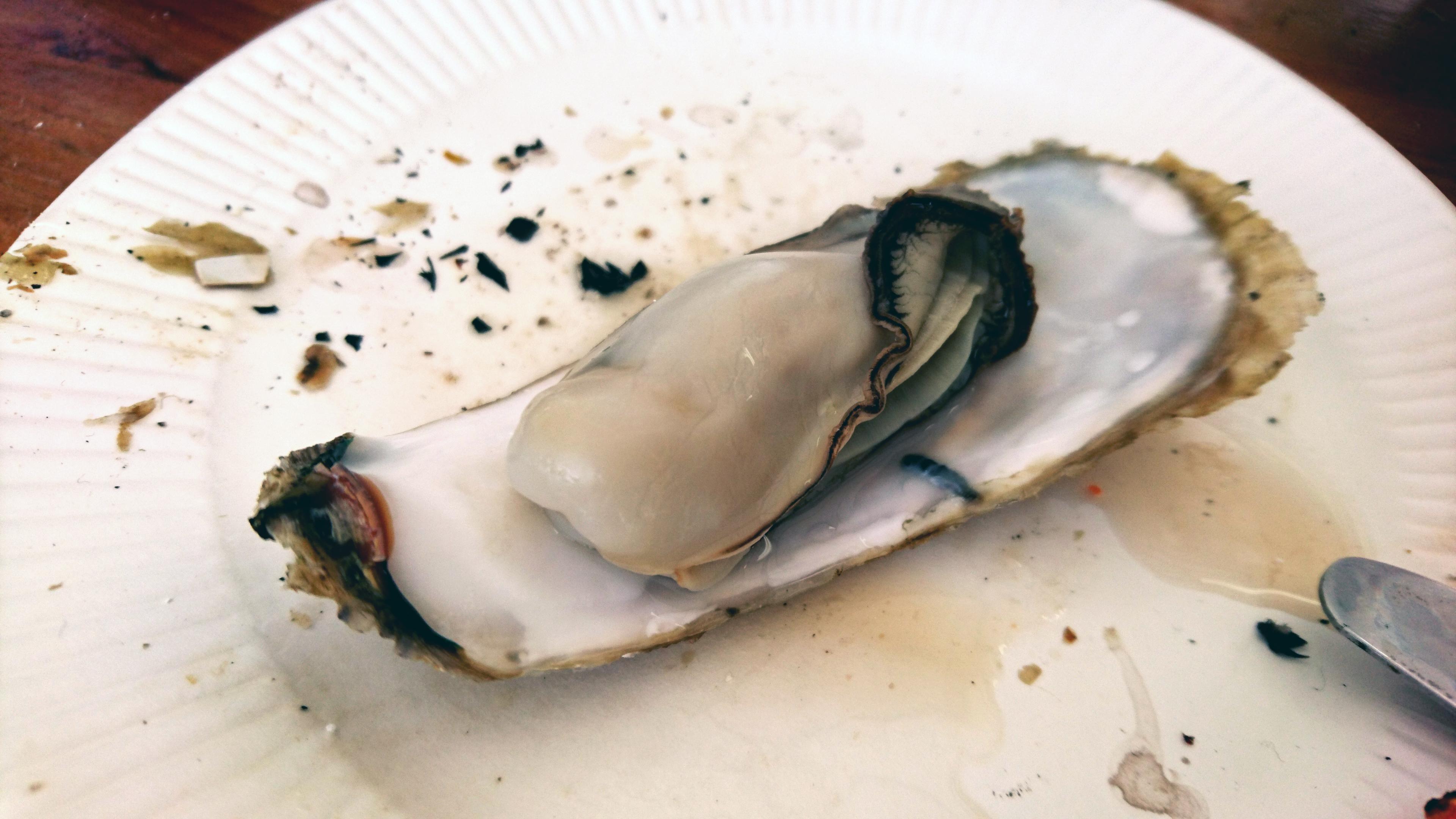 福岡、糸島半島の名物の牡蠣を堪能しよう!船越漁港の牡蠣小屋群がすごい